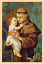St. Anthony Cream Card