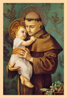 St. Anthony Cream Card